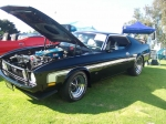1973 Mustang Mach 1 w/JFlaps, Customer Submitted Photo 8